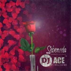 DJ ACE SA - Sebenzela ft. Mellow Bee